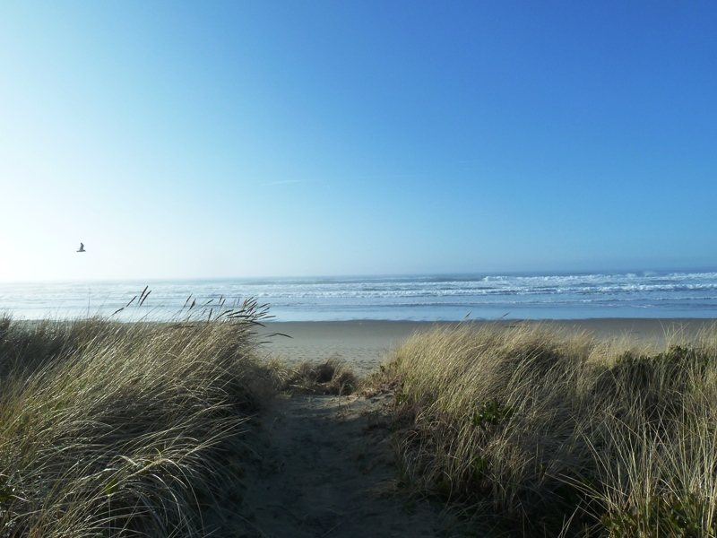Manzanita Beach in Spring
