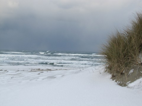 Snowy Beach in Oregon