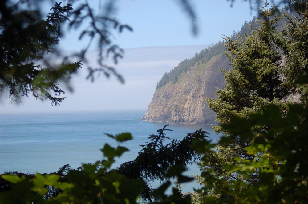 Cape Lookout Trail Oregon Coast