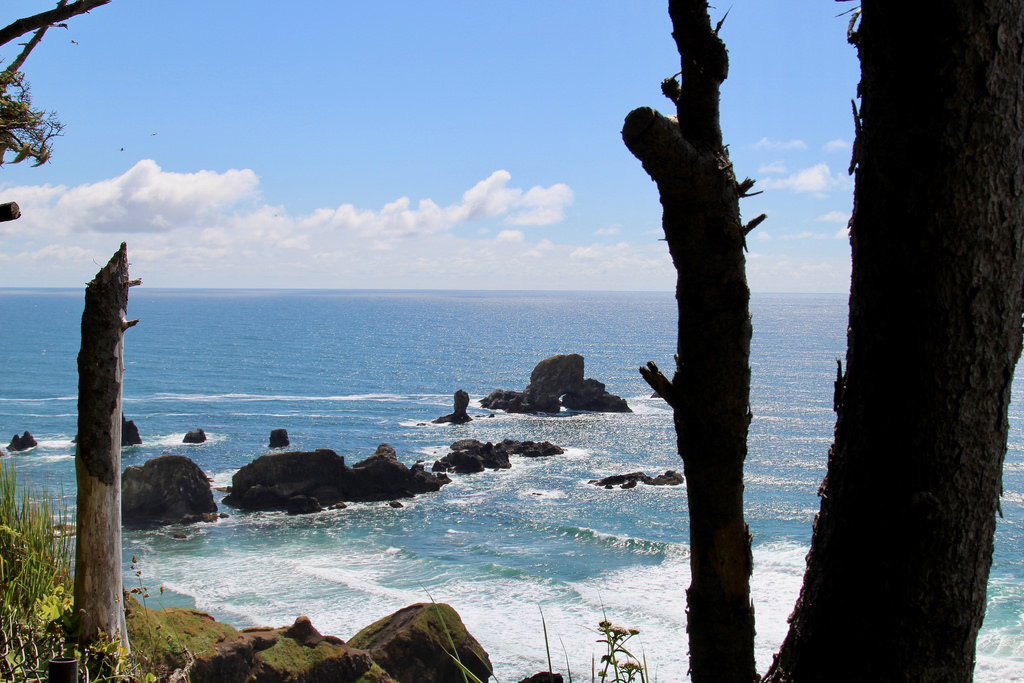 Things to Do in Manzanita Oregon