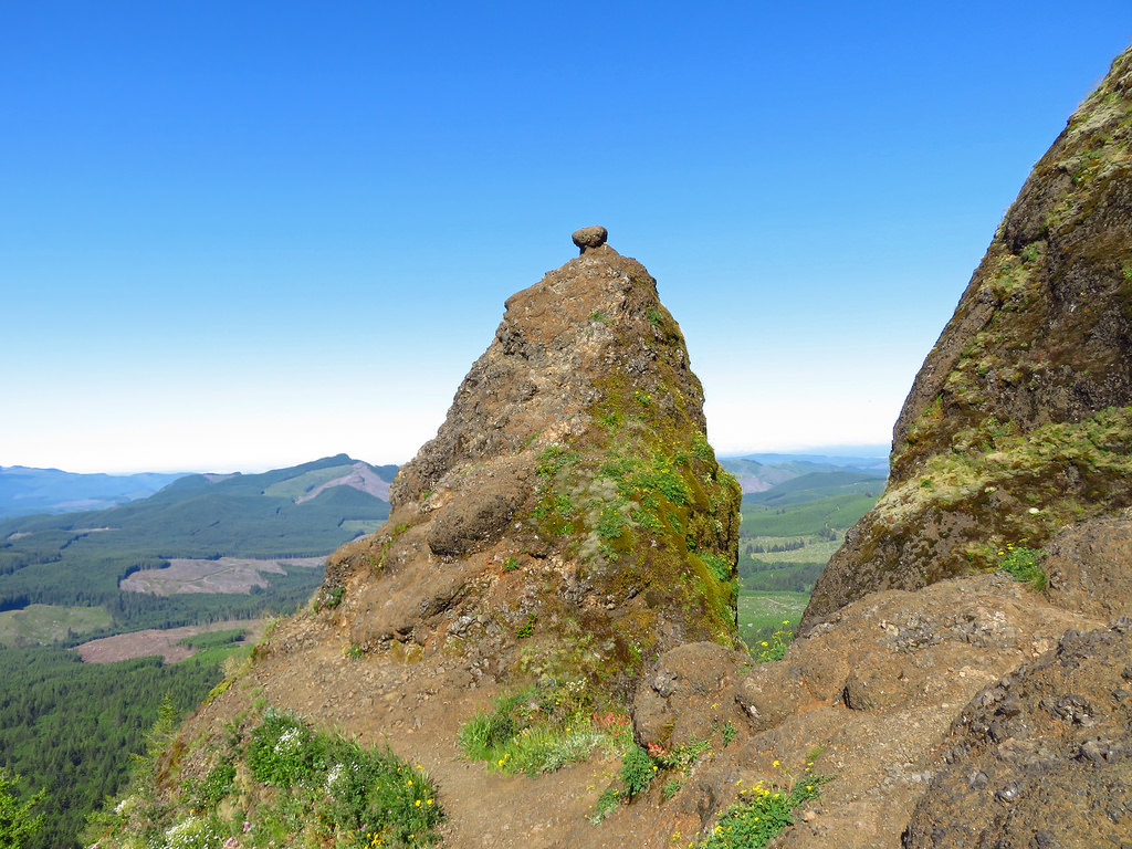 Saddle Mountain Trail Oregon